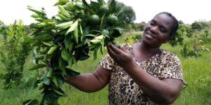 Frau Habachimba mit der ersten Ernte